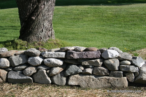 Fig.#62. Rock walls are always worth inspecting and rebuilding in one's mind, especially when the outdoors beckons and mom or dad needs a walk. 